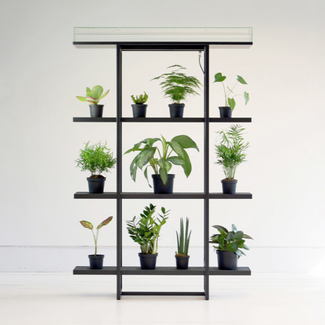 Pikaplant One, Standard, Vertical garden with automatic watering